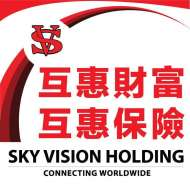 Sky Vision Holding 美国互惠财富集团